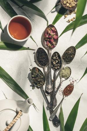 Tee-Tasse-Kanne-Blüte-Persönlichkeitstest-Selbstreflexion